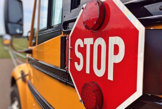 autobus grafika2